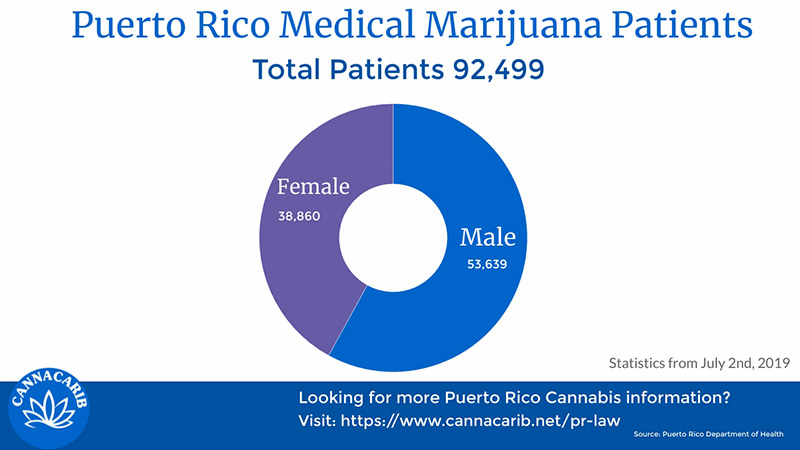 Infographic of Puerto Rico Cannabis Patients by Sex